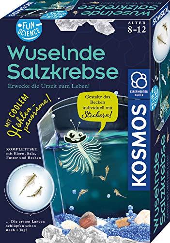 KOSMOS 654160 Fun Science - Wuselnde Salzkrebse, Erwecke die Urzeit zum Leben,...
