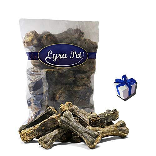 Lyra Pet 20 Kauknochen aus Pansen 10cm Hunde Kausnack Pansenknochen + Geschenk