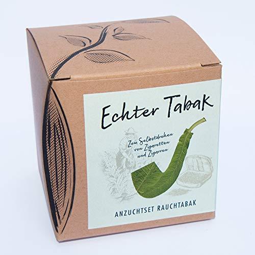 Geschenk-Anzuchtset'Echte Tabakpflanze'