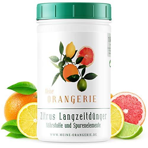 Meine Orangerie - Langzeit-Zitrusdünger [1kg] - Profi Zitruspflanzendünger -...