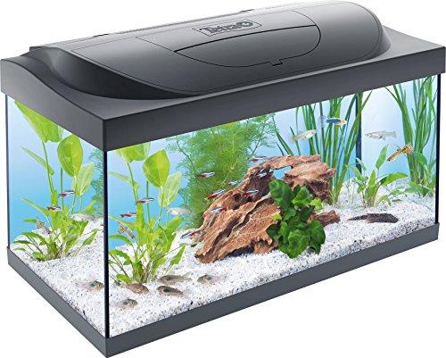 Tetra Regular Starter Line Aquarium-Komplettset mit LED-Beleuchtung stabiles 54...