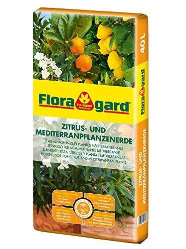 Floragard Zitrus-und Mediterranpflanzenerde 40 Liter Blumenerde, Erdfarben