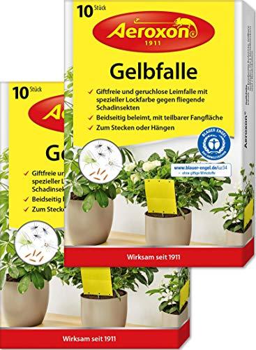 Aeroxon – Gelbsticker, Gelbfalle, Gelbtafeln, 20 teilbare Leimtafeln, perfekt...