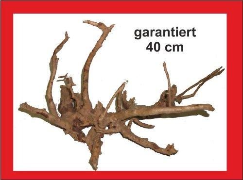 Wüstenwurzel, garantiert 40cm, Aquarium, Terrarium, Mangrovenwurzel