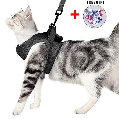 Katzengeschirr Set mit Leine für Autofahren & Spaziergang, zum Gehen 360...