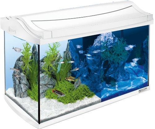 Tetra AquaArt LED Aquarium-Komplett-Set (inklusive LED-Beleuchtung, Tag- und...
