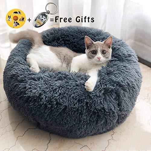 Lamzoom - Deluxe-Haustierbett für Katzen und kleine bis mittelgroße Hunde....