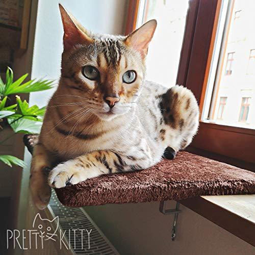 PRETTY KITTY Katzen Fensterbett: Kuschelige Katzen Fensterliege für die...