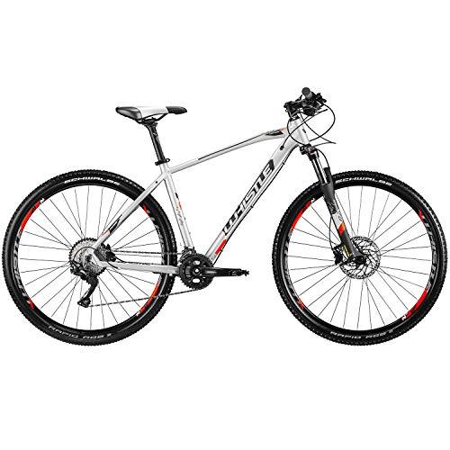 Whistle Mountainbike 29 Zoll Hardtail MTB Patwin 2050 2020 Fahrrad Mountain Bike...