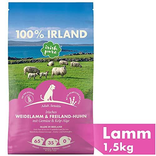 Irish Pure Adult Weidelamm & Freiland-Huhn mit Kelp-Alge - Premium Trockenfutter...