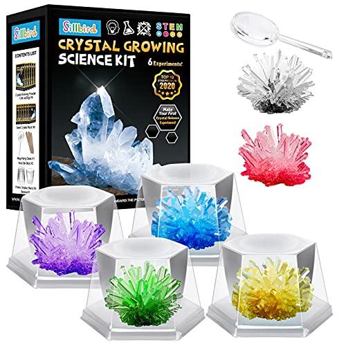 Sillbird Kristalle Züchten Experimentierset , 6 Farben Kristalle...