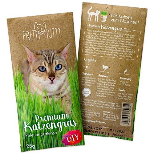 PRETTY KITTY Premium Katzengras Samen: 1 Beutel mit 25g Saatmischung für 10...